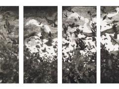 """""""PÁJAROS"""", 2007."""