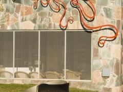 Arquitectura intervenida. Art in situ.
