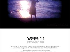vae11