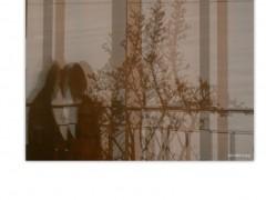 Enamorados de la sombra