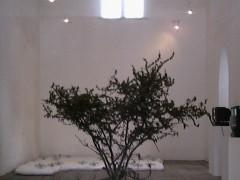 Exposición Nasser el sombaty, 2005