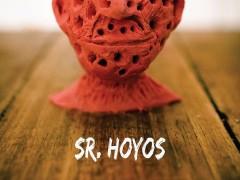 Sr. Hoyos