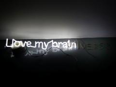 I Love My Brain, 2011