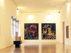 Exposición Tensión Superficial / Museo de arte contemporáneo. 2003