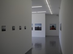 Metáforas de un Horizonte (2009-2011)