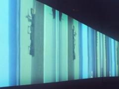 Selección Bienal Siart Museo de Arte Contemporáneo. MAC. Santiago de Chile.