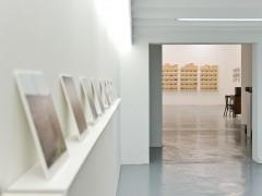 Exposición: Nuevas estructuras de producción