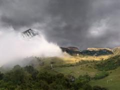 Paisaje andino con niebla - En busca del bosque encantado