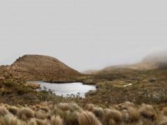 Laguna de páramo - Ascenso al volcán Puracé