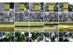 Natura/Cultura, 2007. 3 channel video, 1'15'', still frames