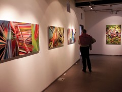 Mindscapes, exhibition view, Contemporary Art Space, Montevideo, Uruguay, 2011