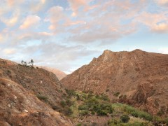 Cultivo - Valle fértil, descenso de Conococha