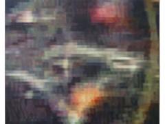 La muerte de Colosio, 2004-2005