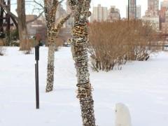 Sculpture Installation at Socrates Sculpture Park