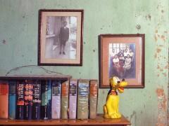 Serie: La Familia Rodelu