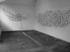 Wall Drawings (2006 - 2009)