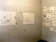 Untitled - Installation of 52 drawings on wall.