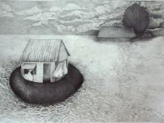 Casa para Inundación