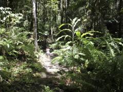 Garden, Wildlife & Extras