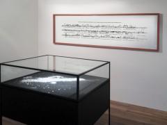 Exhibition : De Naturaleza Violenta