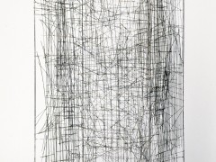 La Jaula (The Cage)
