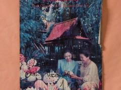 Luck Thai 199 (Detalle). Mapocho.