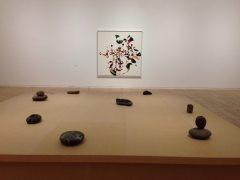 "Installation view of ""Gabriel Orozco-Inner Cycles"""