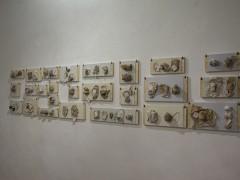 Exhibition view -Paula de Solminihac – Les Noms Secrets - 2015