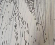 Dibujo táctil para ser creciente, carbón sobre tres capas de papel traslucido de 510 x 120 c.m, 2009
