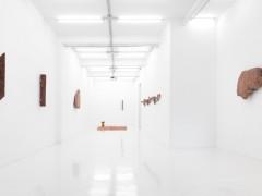 Exhibition view Toma de tierra - Ximena Garrido-Lecca