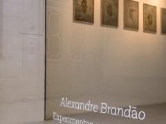 Alexandre Brandão Experimentos com o acaso