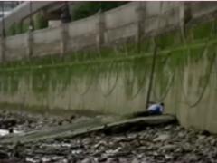 Palaeolithic Insemination of a Royal Womb (Insémination Paléolithique d'un utérus royal) est une intervention permanente devant la Tate Modern à Londres de Jaime Miranda BAMBAREN et Erasmo Wong Seoane. En juillet 2016, ils visitèrent à plusieurs reprises l'ancien canal de drainage qui mène de la cathédrale Saint-Paul, au bord de la Tamise, au coeur de la City, le centre bancaire historique de la métropole impériale. Là, ils ont peint sur les murs le Manifesto Interno del Culto Cargamento (Cargo Cult), connu populairement sous le nom de Manifesto cabeza de pescado. Cette galerie souterraine fut ainsi transformée en Terre Sainte. Cette intervention fait partie d'une série d'actions et de rites effectués dans tout Londres afin de coloniser la psyché, violer l'esprit et féconder l'utérus de la royauté en plein coeur de la capitale du capitalisme mondial. Rendre vulnérable son espace impérial et ses trois cathédrales: l'art (Tate Modern), la religion (Saint Paul) et la finance (City).
